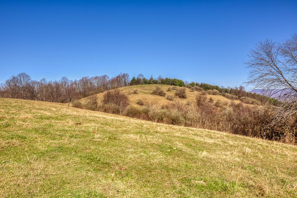 Looking for an amazing homesite or maybe two?? Here is your chance to have it all...acreage and a view! This property features over 3,000 ft of road frontage, 2 ponds and many possibilities. Investors take notice of what this land could be!! Cattle is currently on the property. Please close gate. Schedule your showing today
