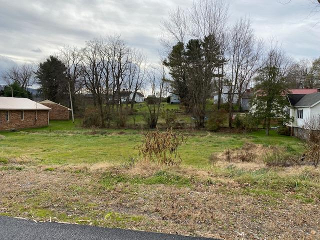 Good sized lot on freshly paved street in Wytheville. Lot is rearward sloping which would be perfect for a walk out basement. Lot already has water and sewer hookup but potential purchaser needs to verify if hookups are suitable for there intended use.
