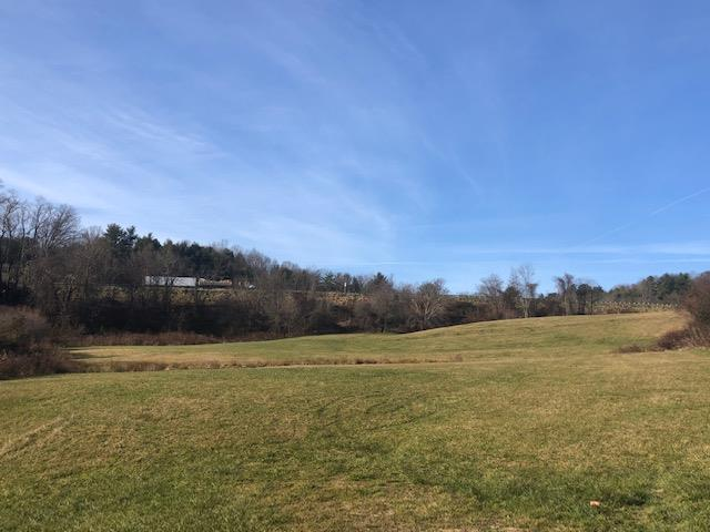 Commercial land visible from I-77 in Hillsville, VA. 4.17 Acres by survey. Commercial potential. 15,000 daily traffic count on nearby Carrolton Pike. 8,200 population in a 5 mile radius. Open land with drive from Old Galax Pike.