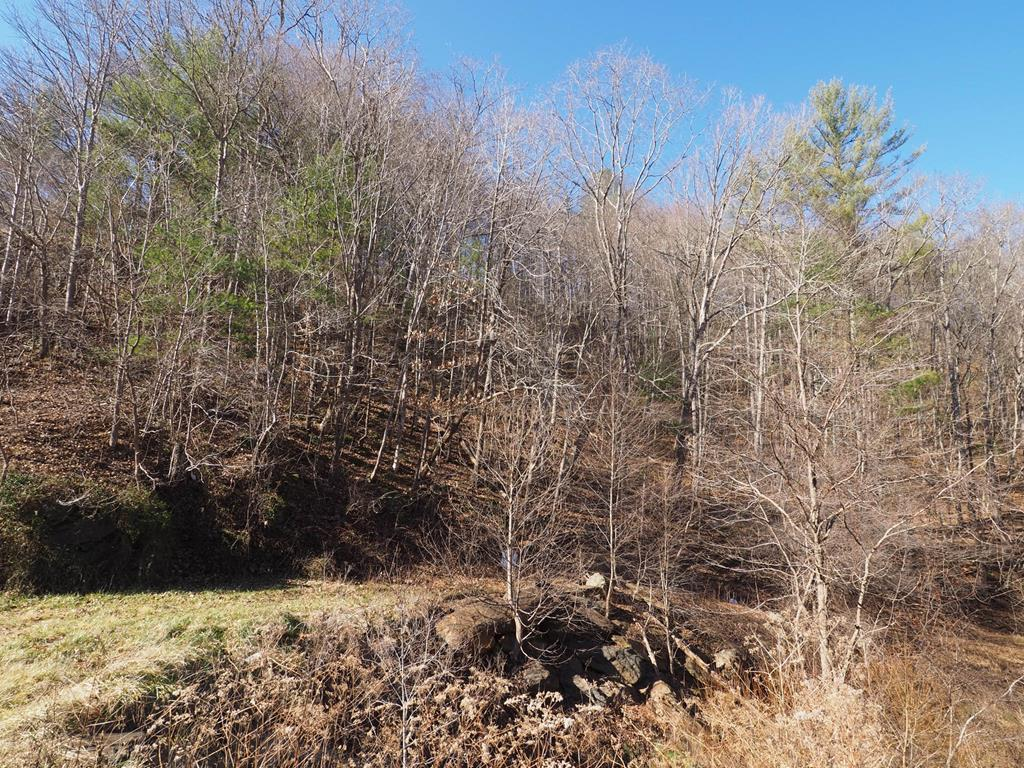 This wooded tract just steps from the New River and the public boat landing could offer your get-away from the busy life to much relaxation! Once to the top there are flat areas for a possible homesite and views of the New River. Just minutes from both Independence and Galax here's your place to hunt, camp, or build a get-away and have the river just over the hill! Don't mis out on this opportunity priced well below tax value!