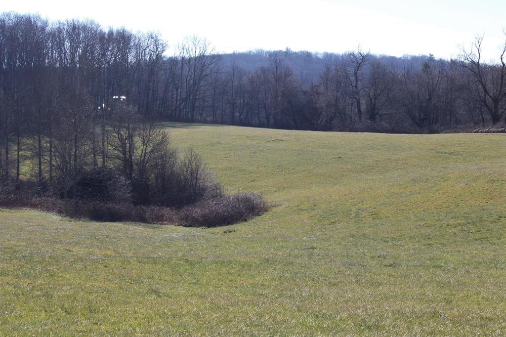 This is a beautiful parcel of good farm land which is being used both for cattle and for hay.  There is a water source on both sides of the road, although it is a small source on the side being used for hay.  The largest parcel is mostly cleared land that is used for hay but part is wooded with hardwood trees.  The other side of the road is about 50% cleared and there are mature hardwood trees on the other half.  You have a beautiful countryside view from this side with a clear view of Buffalo Mountain.  If you are looking for land to build a home, there are several gorgeous spots with nice views.  There is a spring-fed pond on this part of the property.  It is a peaceful area where you can see a few neighbor's houses in the distance but you could have plenty of privacy here, too.  It is located approximately 5 miles from the Blue Ridge Parkway.