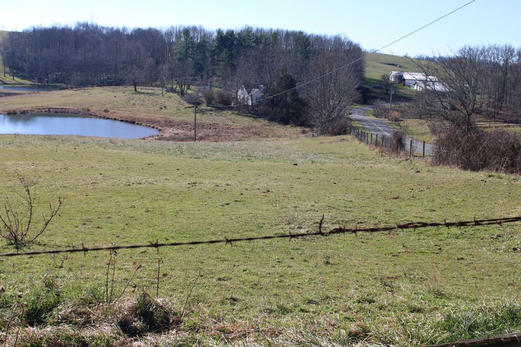 This is a nice 1.02 acre lot on the corner of Doe Run Road and Brady Pike. It is less than a mile from the Blue Ridge Parkway. If you are looking for a pretty spot to build your dream home that has  nice countryside views, you should come look at this one! .  You're overlooking the neighbor's pond behind the house and horses grazing to the side of the property.  The land gently slopes and you could build a home with a walk--out basement.  There is good fencing along both roadways but the land is open to the adjoining pasture land.