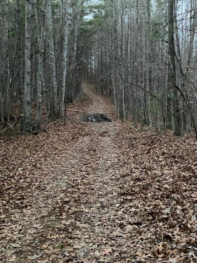 MOTIVATED SELLER SAYS BRING ALL OFFERS!!!Here is a chance to own 92 unrestricted ac in Fries, very close to The New River and New River Trail. Excellent property for the outdoorsman who loves to hunt and fish, or with a little work on the numerous interior roads and trails, you could access several nice building sites.  It's getting harder to find large acreage tracts like this one that offers streams/creeks, potential views, and superb privacy, yet is an easy drive to all amenities, AND priced to SELL!  Property is in 3 tracts with a portion of each tract being in Grayson AND Carroll County.  There are entrances to all 3 tracts, but the easiest way in is by the directions.  You will need some type of 4WD to show this property, or bring your hiking boots and plan to spend a few hours.  MOTIVATED SELLER SAYS BRING ALL OFFERS!!!