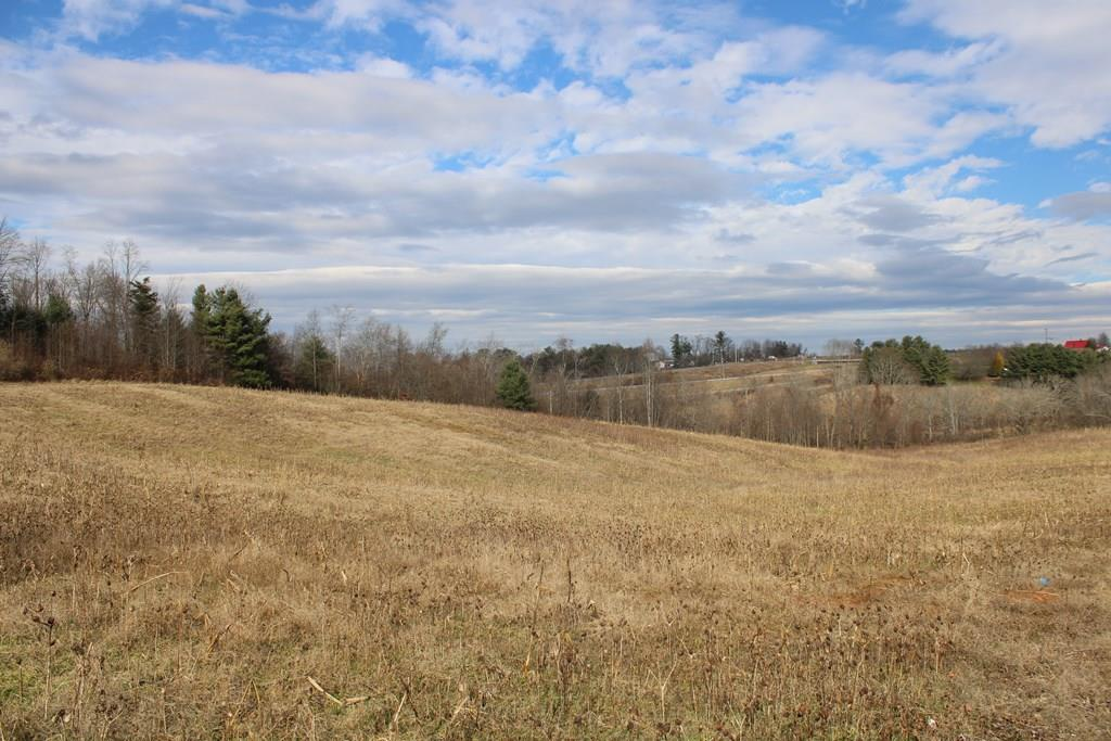 15.49 acres within the town limits of Hillsville. Great development potential. Land has been previously been used for crops. Water, sewer and power available.