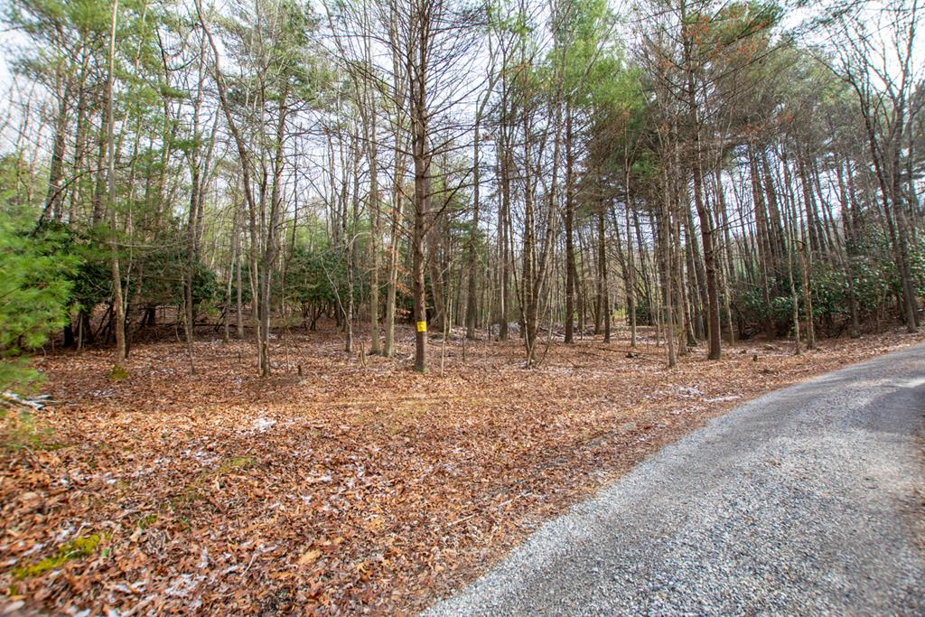 Looking to build you dream home??  Look no further than this private and secluded 11.8 acre tract just off Whippoorwill Rd and minutes from downtown Wytheville.  This large wooded tract has a ton of potential with many possibilities, so bring you vision and inspiration to build your dream home and live among the abundance of wildlife and privacy.  This property offers country solitude but only minutes to the conveniences of town and proximity of the interstate.  So make an appointment today to see what this hidden gem has to offer!!!