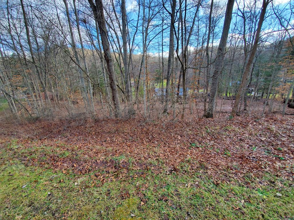 Minutes to town!  Paved road!  Property has some trees on it.  Build your dream here on your blank canvas!