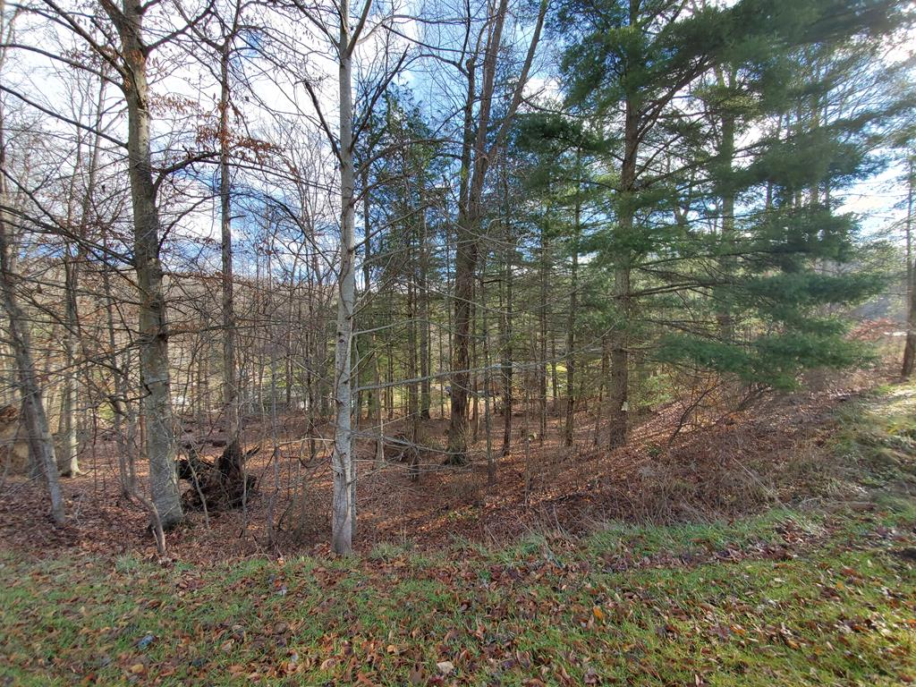 Minutes to town!  Paved road.  Property has some trees on it.  Build your dream here on your blank canvas.
