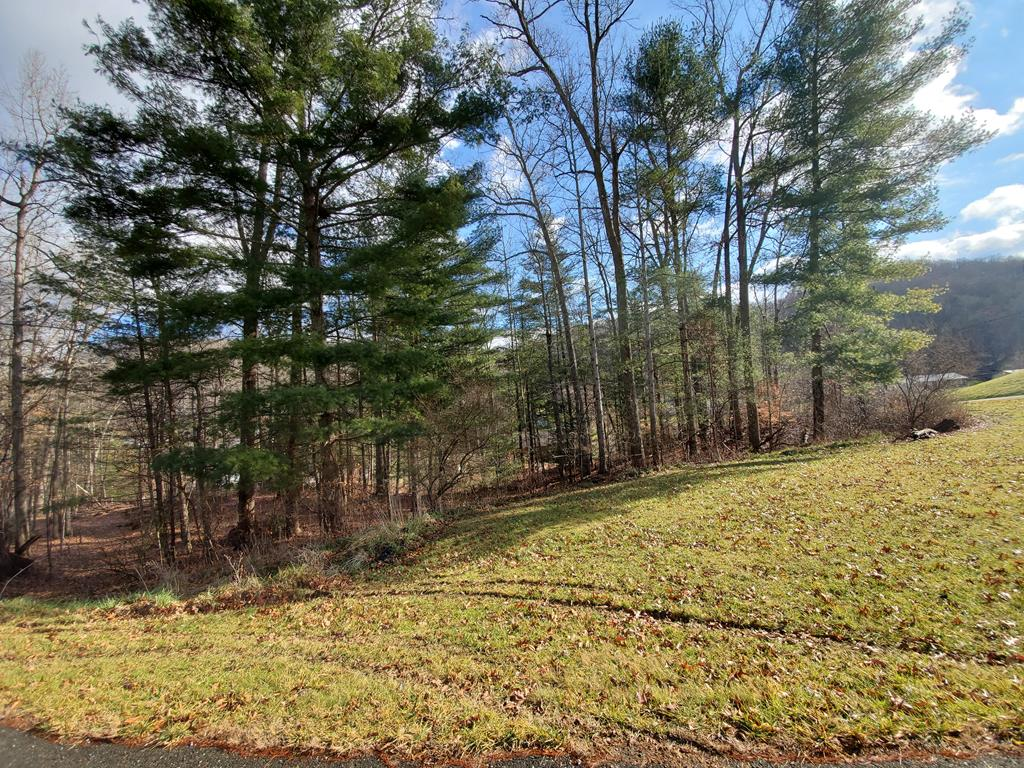 Minutes to town.  Paved road.  Property has trees on it.  Build your dream here on your blank canvas.