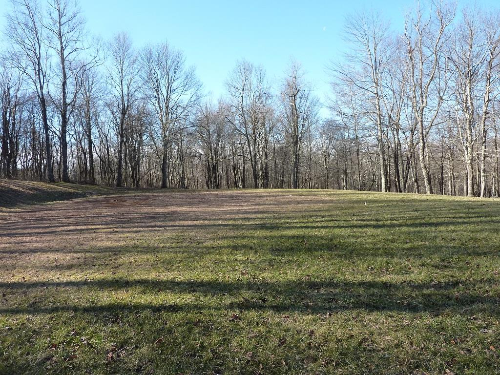 5+ Acre building lot at River Ridge Estates. Property has been partially cleared leaving an ideal mix of open lawn and shade trees. There is already a gravel drive, a large level building site and a well in place. All lots have access to a 1 acre common area on the Dan River. This location is only minutes to the Blue Ridge Parkway and many area attractions including local wineries and area golf courses.