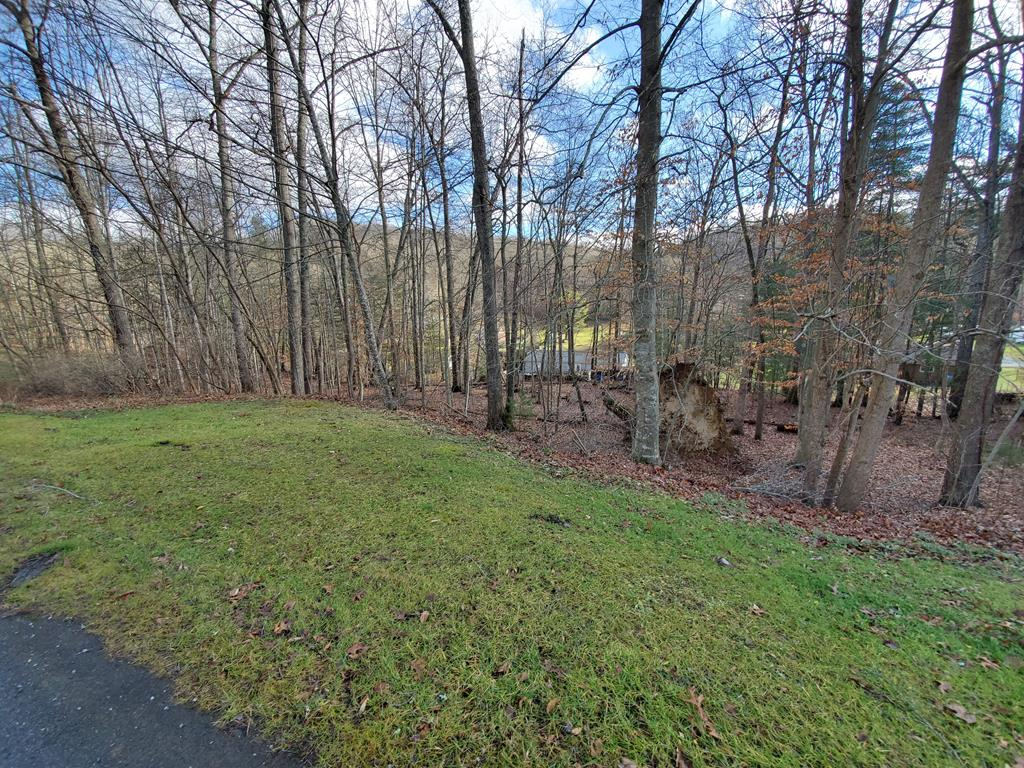 Minutes to town!  Paved road!  Property has some trees on it.  Build your dream here on your blank canvas.