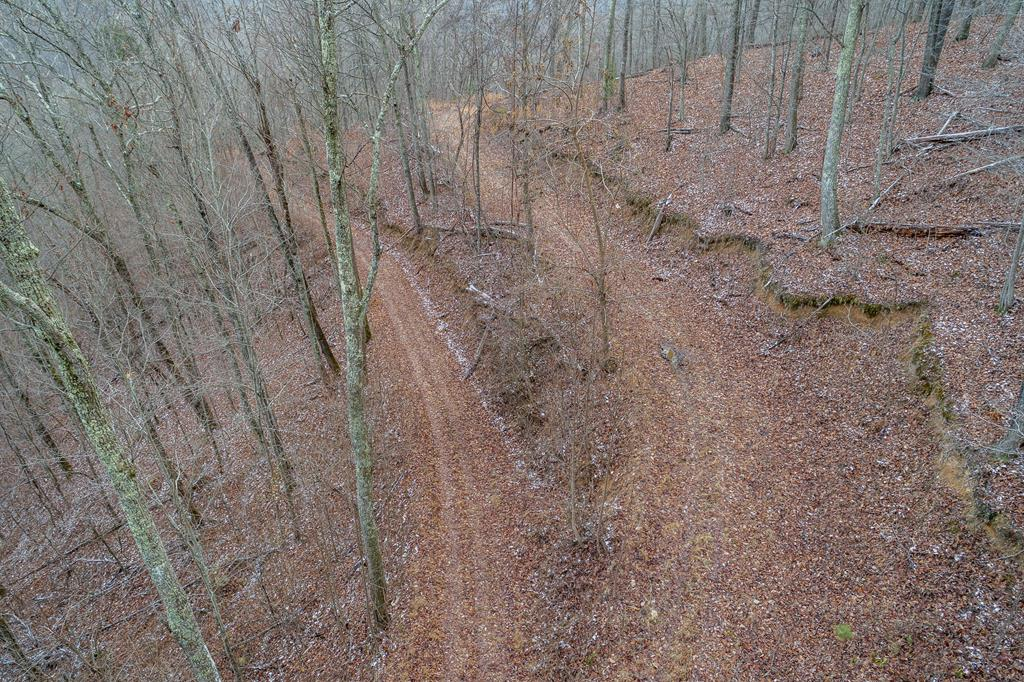 Private, secluded mountain land with a view and river access!  This property offers the perfect spot for your new home or cabin in perfect seclusion and privacy on pristine wooded mountain land, while still minutes from Abingdon.  This listing includes 4 lots (22,23,24,25), totaling 11.5 acres +/- and includes access via private road.  Property is located on the north side of North Fork River Road.  Property owners within this subdivision will have access to the 1.6 acre community lot located near the entrance to the subdivision across the road, which has river frontage suitable for light boat, kayak, canoe launching.  Additional acreage may be purchased.