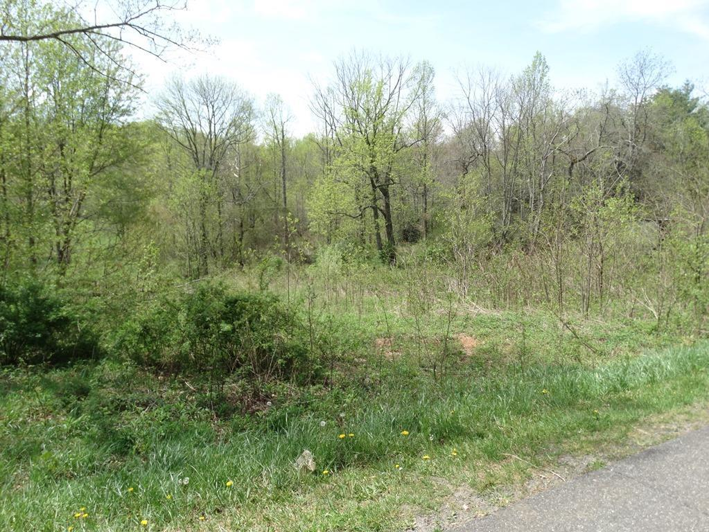 9.9 acres adjoining the Blue Ridge Parkway 5 miles from I-77 in Fancy Gap. Land features: Creek, Paved Road, Mostly wooded, Unrestricted land and some marketable timber.