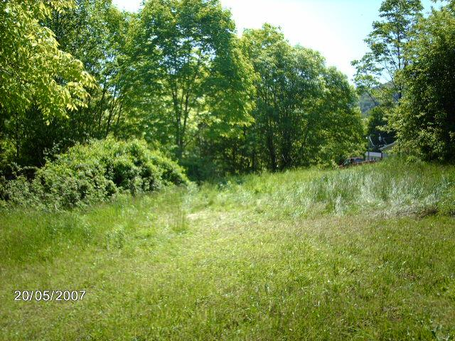 8.78 ACRES AT GRATTON WOODED ROAD FRONTAGE WITH STREAM IN FRONT