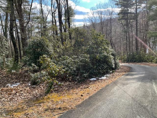 Two wooded lots in Chalet High. HOA Dues are $396 per year. Chalet High amenities include: Swimming Pool, Clubhouse, 2 Fishing Ponds, Tennis Courts, Playground, Place to put your trash. Located less than 4 miles to Hwy 52 and I-77. Acreage is +/- 1 acre.