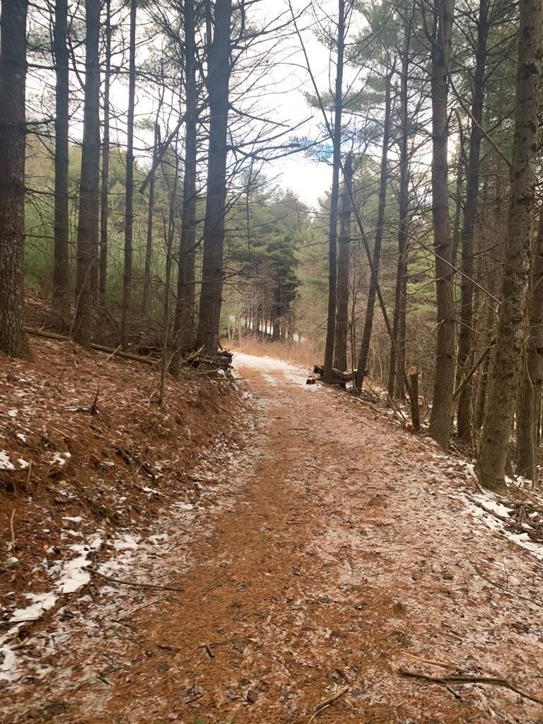 Private building lot in Two Tops with underground power in place. There are nice medium range mountain views and mature White Pine trees on the property. Wildlife is abundant in the area. Here's a chance to build your dream home in a private location.