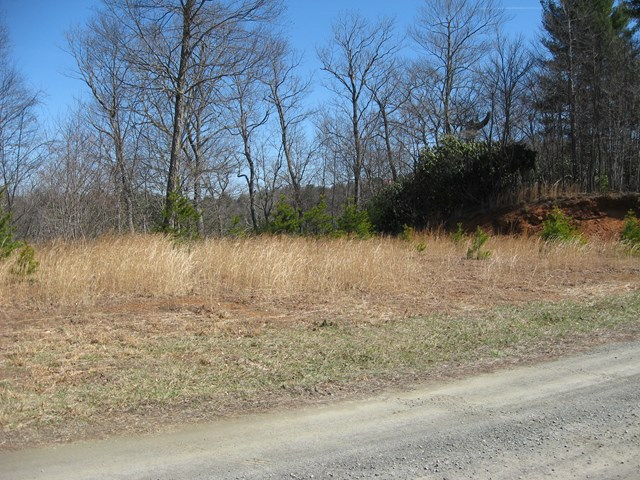 Creek front lot in a quality subdivision with good views of local area. Priced well under assessed value. There are two common areas in Laurel Mountain along Crooked Creek for use by all property owners.