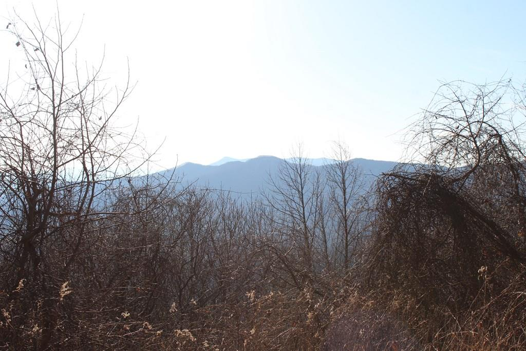 MILLION DOLLAR VIEWS ! Cut these few trees to open long range Blue Ridge Mountain views are jaw dropping magical and in this price range about impossible to find. Private, secluded, mature trees, mostly wooded, already surveyed, power available for you to run to building site of your choice. Gorgeous elevation with road beds all over it. Easy to walk on and see. Affordable for just about anyone. Come to the mountains and enjoy the serenity in the country just off the Blue Ridge Parkway. There is an adjoining lot also for sale if you seek more acreage. There are trails all over the tract. Easy access. The building sites at one time were cleared and would be easy to quickly clean up again. The roads are easy to walk around on as well and the land has plenty of wildlife to enjoy. Location at the end of road is perfectly serene, peaceful, quiet. Worth putting your boots on the ground and seeing this in person. These million dollar views of the Blue Ridge Mountains WOW ! This is Lot 22 only