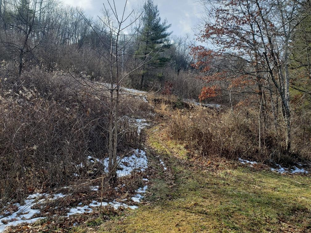 Great place to build your dream home! Over 8 acres to choose that perfect spot for your new house or manufactured home with well and septic already in place. Within minutes from the New River, New River Trail, and the town of Fries.