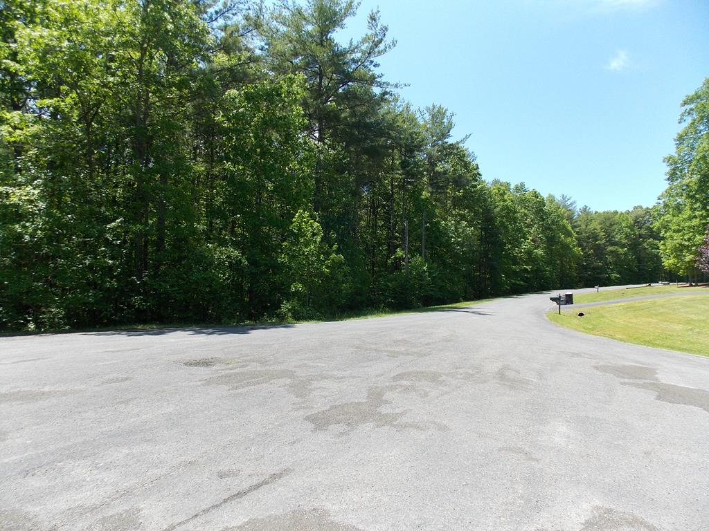 This 1.313 acre lot is located in Country Woods Estates and features paved road frontage, public water, underground power, and it's been previously perc test approved! Also, these lots on Wood Lane (several more available) are approved for double wide homes on permanent foundations! Conveniently located just seconds from Lake Ridge Resort and Highway 100!