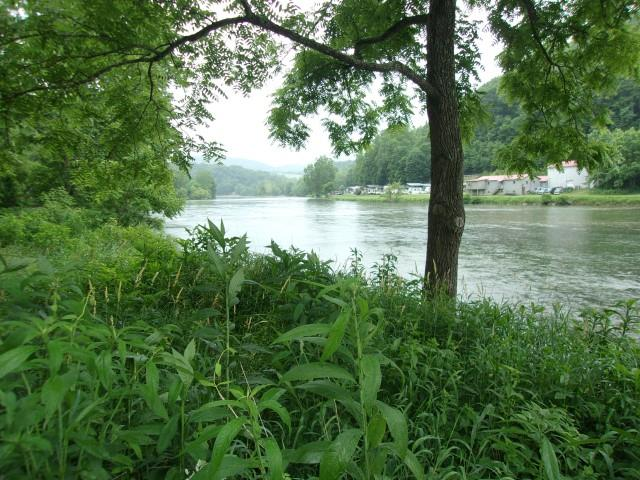 3.53 acres overlooking the New River.  224 .30 feet of River frontage.  Survey.  Well 388 feet deep. Septic with 2 tanks. Electric. Zoned recreational.  This is the perfect place to canoe, go kayaking, tubing, fish or swim and go exploring!  Bring your family and enjoy all the recreational opportunities this land provides.