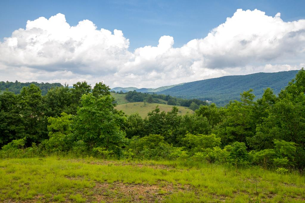 Beautiful mountain views of Elk Creek Valley located in Grayson County. This is one of two adjoining tracts. This lot has its own entrance and road leading up to a buildable home site with an outstanding view. A small tiny cabin on Lot 5 is already partially completed. This property offers plenty of seclusion and acreage, very close to Jefferson National Forest, and even a small stream running through the middle of the property. Very close to hiking trails and horse camps. Lot 5 has been perked for a 3 bedroom septic system. Lot 4 & 5 can be sold individually or together. Call for an appointment today!