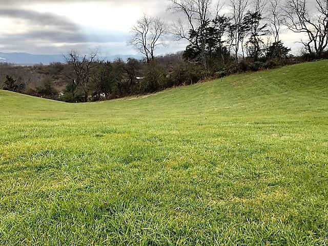 This 0.99 acre building lot for sale in Max Meadows, VA is perfect for your future home. Located in a well established neighborhood on paved road with public water available; will require septic to be installed.  Conveniently located near schools, shopping, medical facilities and has easy interstate access. Take a look at this nice lot and get started on your new home...don't wait, this one won't last long!