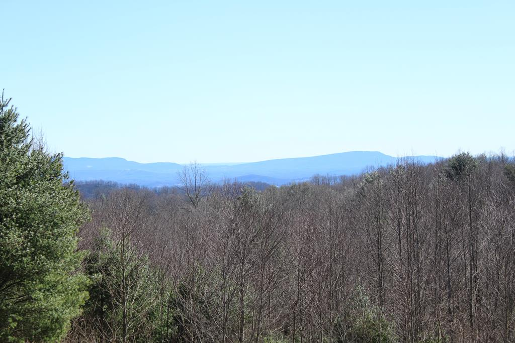 GREAT PIEDMONT VIEW from this 1.69 ACRE TRACT in Overlook Hills. Lot 13 is located on the Continental Divide and has water rights to a good well. It has been approved for a septic system. It has a good spring which could easily supply a small trout pond. Overlook Hills has state maintained roads so there are no HOA fees. It is located at the Blue Ridge Parkway MP 186.5. This is a very attractive neighborhood!!!!    $45,000 with owner financing available.