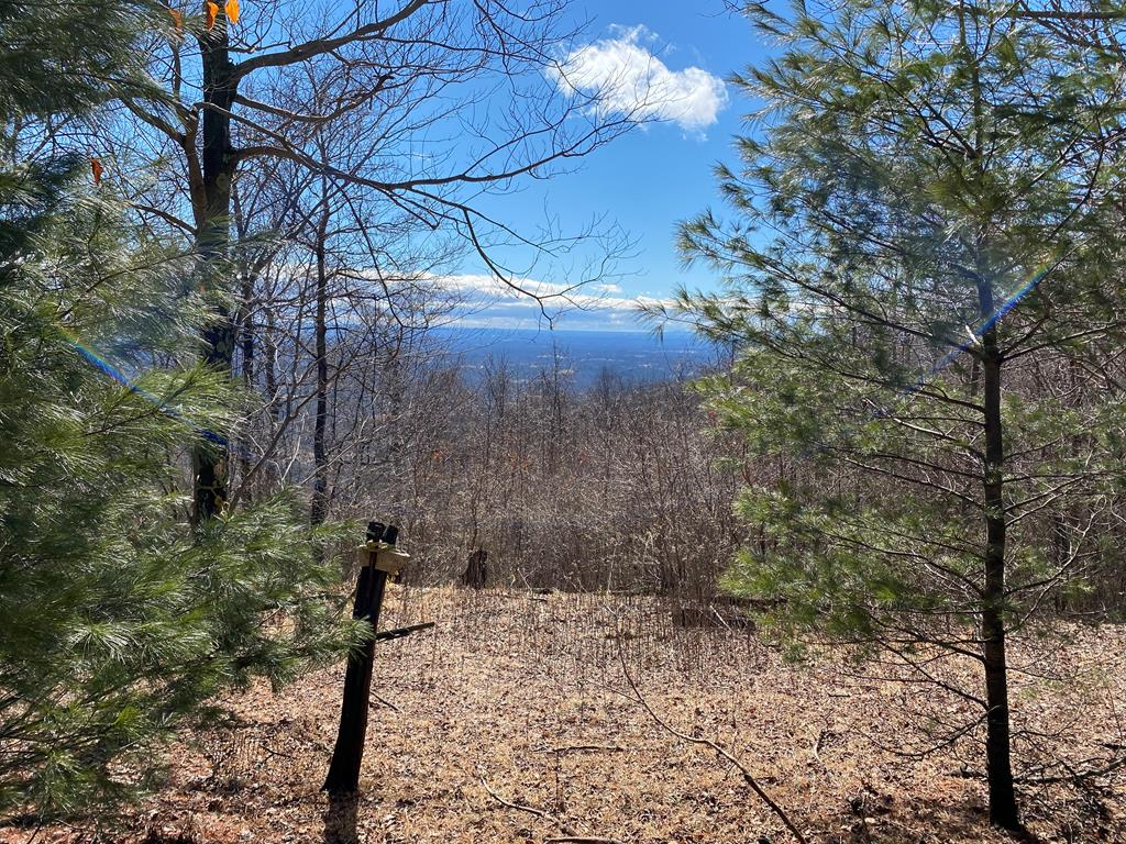 If you're looking for a Piedmont View lot with nice hardwood trees in a development without HOA dues, check this one out!  The view is fabulous with Pilot Mountain sitting out there in all its splendor.  The property has been partially cleared and is on a paved road.   There is a no formal road maintenance agreement but property owners typically pay $150-$200 a year to a community fund for road maintenance.  There is a power pole on the corner of the lot so getting electricity to your house will be easy.