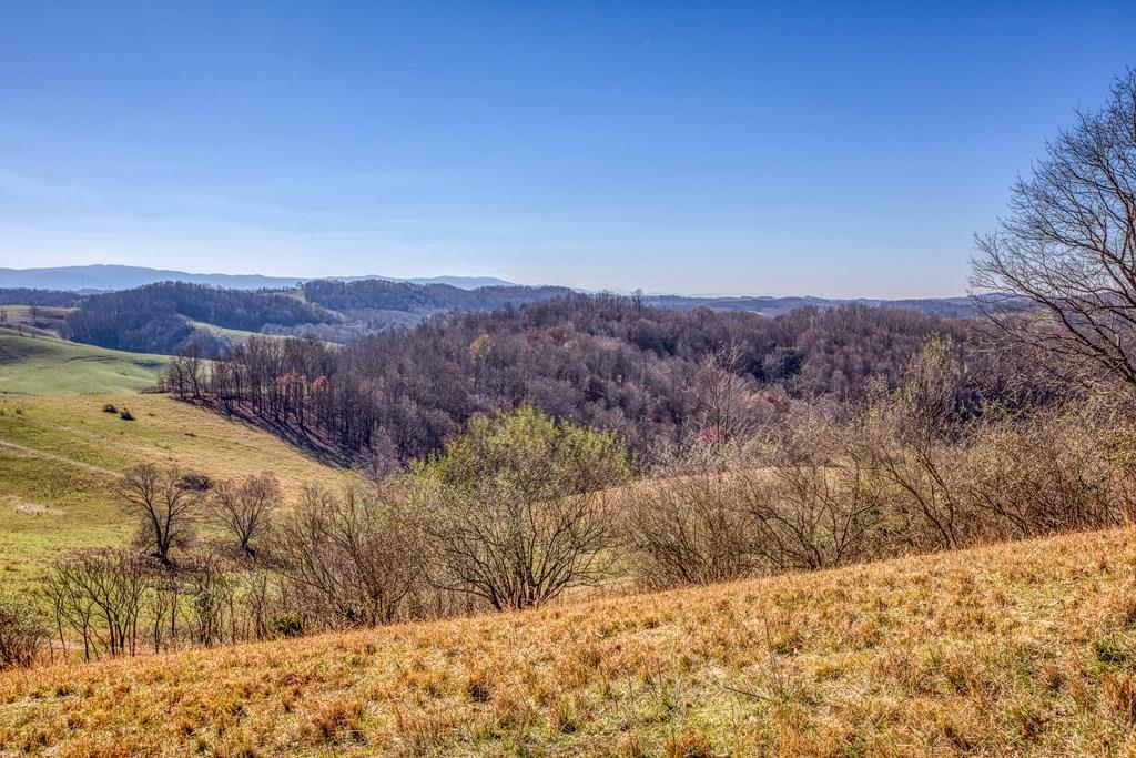 213.3 Acres of rolling pasture land with two ponds. Property is fenced for livestock. Land is approx. 90% open with balance in woods. Farm has over 3,000+ feet of road frontage giving the farm developing opportunity or some divisions. Schedule your showing today! Listing includes two parcels (lots 19 & 20), sold as is, where is.