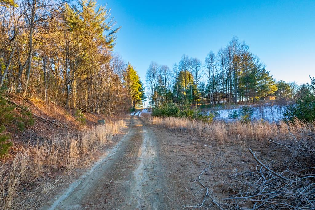 Lot 2 next to the cabin at 250 Thunder Hill. This lot has access to a shared 4 bedroom septic and access to the shared well.  The cabin that's there is the only other parcel that has access to either well or septic.