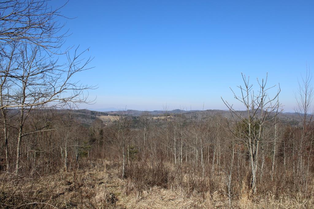 Awesome 360 long range views in the middle of Carroll County. Land has been cleared and ready to built on. Underground power. Close to Crooked Creek Wildlife Management with plenty of hunting and trout fishing. Lot does have restrictions. Call office for details.
