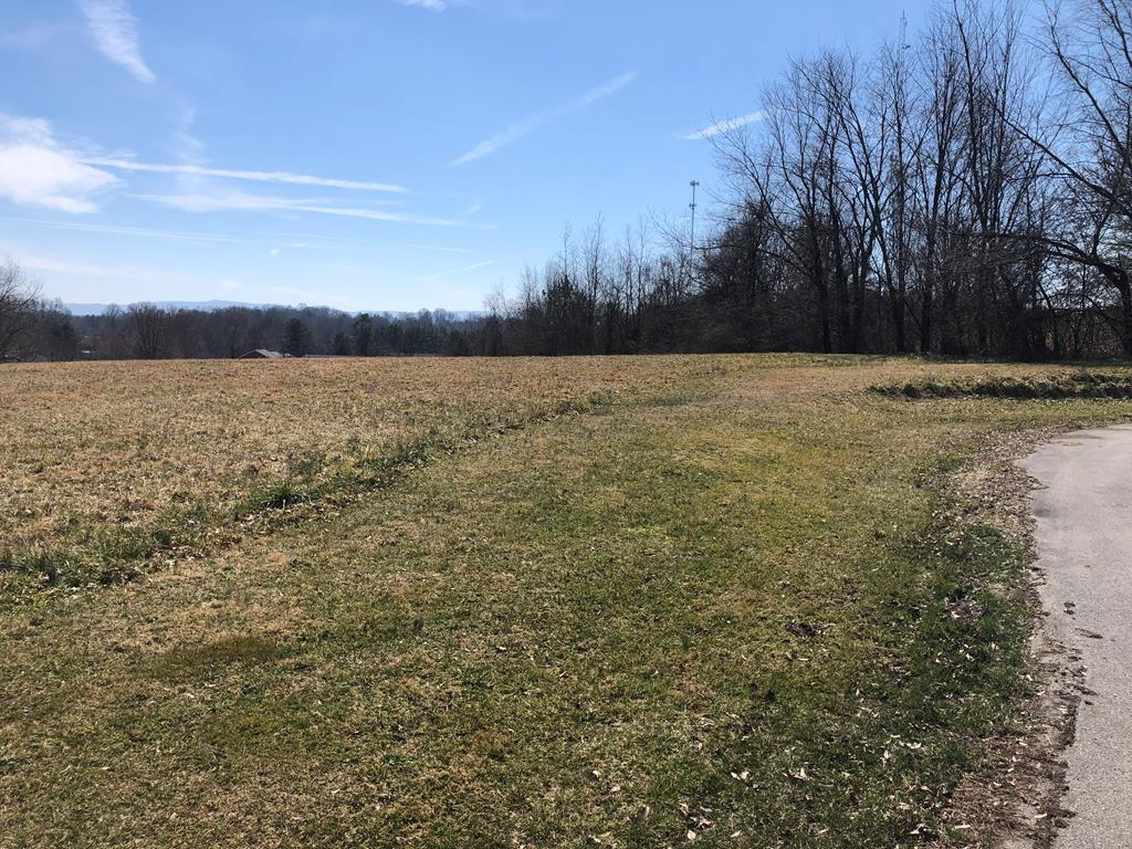 Beautiful lot in Abingdon VA adjacent to the Coomes Recreation Center!  This property sits at the end of a dead end street and has incredible mountain views.