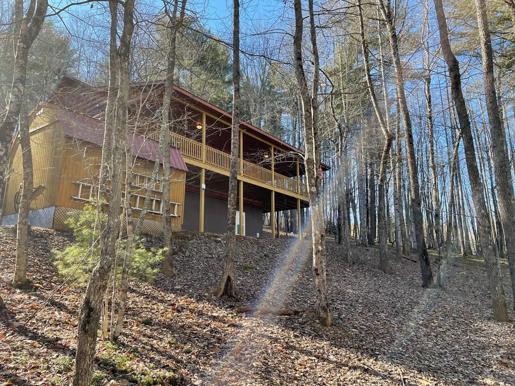 Beautiful log cabin in pristine condition on 4.256 acres.  Secluded wooded lot with mountain views.  Large wrap around outdoor covered porch, hardwood floors throughout, gas oven, stainless steel appliances, and open floor plan.  Whole house generator and ADT security in place !  Outdoor storage building ( 14X10 with double open door)