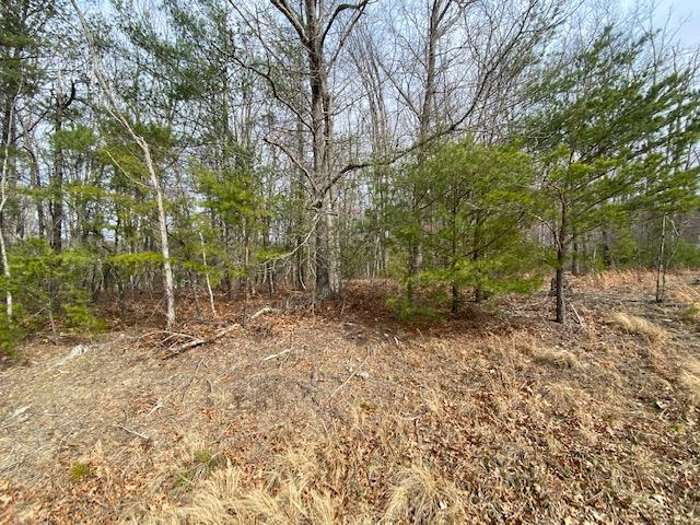 Wonderful building lot located on beautiful Barrett Mill Rd.  This 1 acre lot is approved for a modular or stick built home. Land is lightly wooded and lays well.