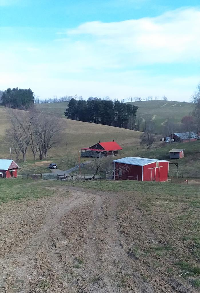 Take a look at this 38.68 acre farm nestled in the Appalachian Mountains yet minutes to U.S. Hwy.11 and Interstate 81. Includes barn, covered feed lot, storage shed, spring house & cabin. Artisan well and pond on property. Cabin is 2 BR, 1 BA, hickory kitchen cabinets, tile in kitchen & bath, covered front and back porches with an open deck. Great mountain weekend getaway! Cabin needs water & electricity connected, and septic installed. Pond needs work - cattle busted drain pipe. Good fencing for livestock. Neighbor has been running cattle on property. Great building sites. Zoned for manufactured or mobile homes too. Timber has not been cruised.
