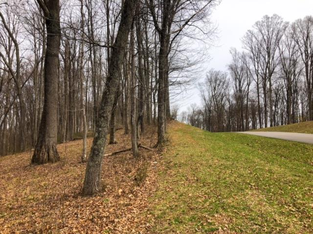 Build your dream home on this gorgeous 1.35 acre lot in The Heritage!  This exclusive lot showcases mature trees and a fabulous level, cleared area perfect for your back yard! Lot features underground utilities including water, city sewer, cable, and natural gas. Located only 5 minutes from I-81, you have easy access to all of the amenities of historic Abingdon. The Heritage is Abingdon's newest premier neighborhood where you can enjoy the many cultural and business attractions nearby.  Abingdon is home to The Barter Theater, The Martha Washington Inn, South Holston Lake and The Virginia Creeper Trail. Schedule your private showing today and start browsing house plans!