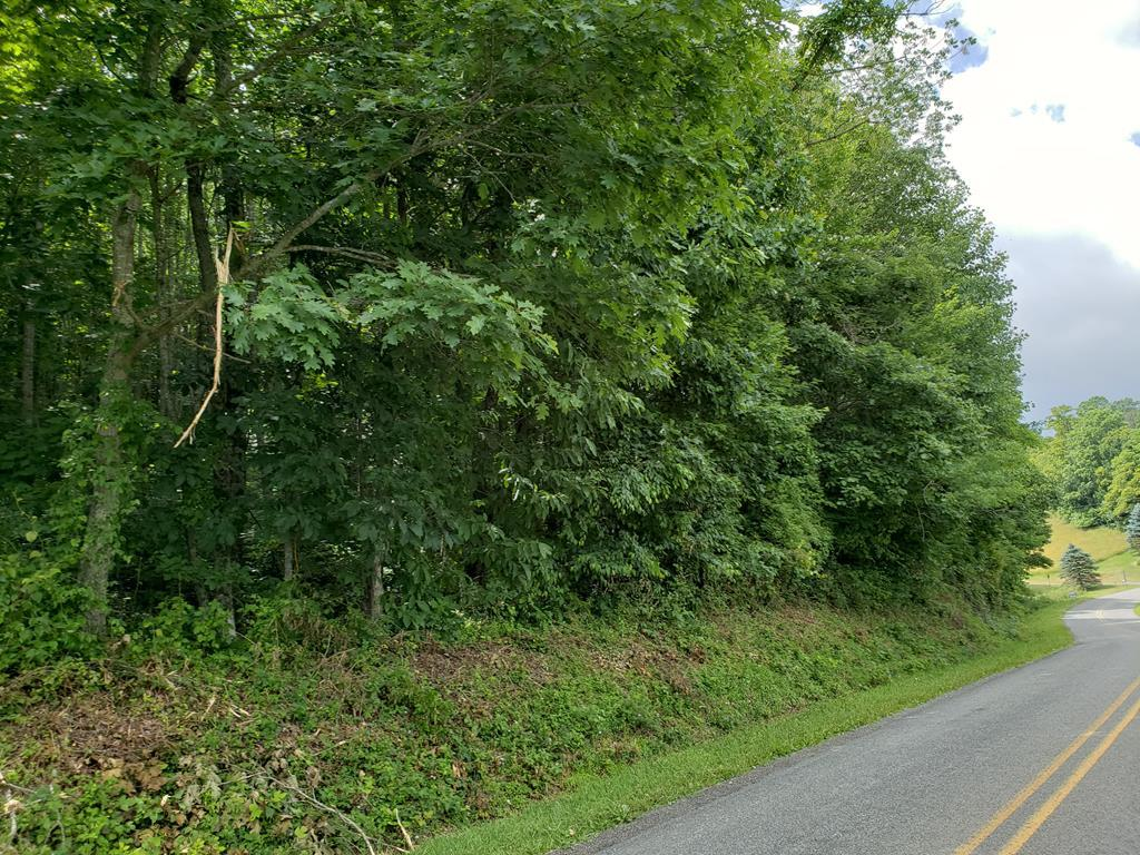 7.12 acres in Hillcrest Estates.. Wooded lot located on a paved road near Hwy 52 and Hwy 58.  With tress cut you would have a beautiful pastoral view. Land does have restrictions.Natural gas line runs through corner of property.