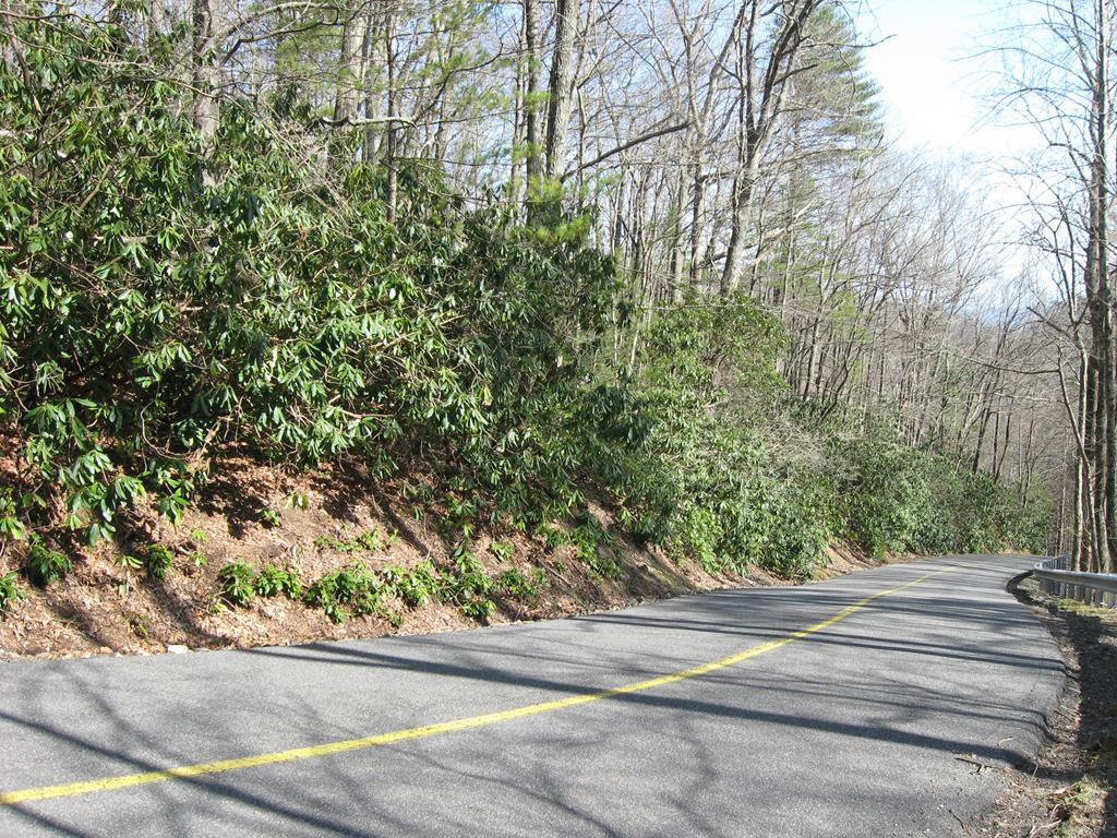 WOODED AND PRIVATE DOUBLE BUILDING LOT SITE IN CASCADE MOUNTAIN RESORT OVERLOOKING A CASCADING MOUNTAIN STREAM.  SIT ON THE FRONT PORCH OF YOUR NEWLY CONSTRUCTED CABIN AND ENJOY THE SITES AND SOUNDS OF A YEAR ROUND CASCADING MOUNTAIN STREAM.  ALSO ENJOY THE AMENITIES OF CASCADE MOUNTAIN RESORT INCLUDING NEW SWIMMING POOL, POOL HOUSE, TENNIS COURTS, BASKETBALL COURT, VOLLEYBALL COURT, FISHING POND, WALKING TRAILS, COMMUMITY CENTER, PLAYGROUND, AND A TRASH DROP-OFF SITE.