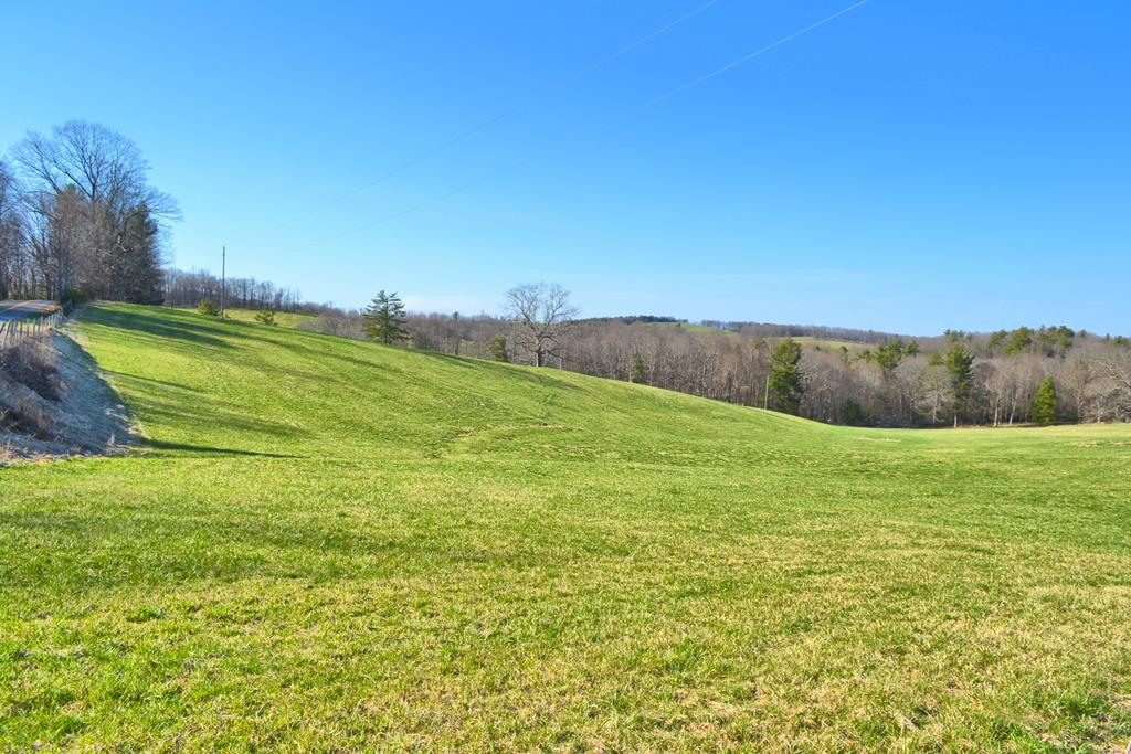 What a beautiful Virginia Mountain land tract!  Approximately 18.8 acres with lush open fields, road frontage, woodlands, small mountain stream, and long range views located just off the Blue Ridge Parkway.  The terrain ranges from level to gently rolling and offers multiple potential building sites for your Blue Ridge Parkway retreat home, primary residence, or mini farm.  Imaginer relaxing on the porch or deck of your newly constructed home or cabin and watching the native wildlife during their daily routine.  The location is perfect for those wanting the country feel but still be close to recreational, shopping, and dining opportunities.  This is part of a larger tract. The adjoining 10 acres with two homes is also on the market providing an opportunity to have a total of 28.8 acres and 2 homes in place.  See MLS # 77590.