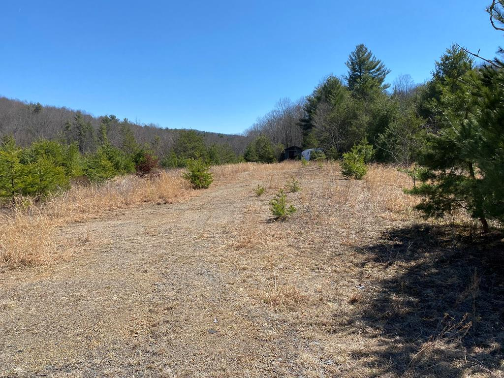 Nice lot with multiple possibilities. Approximately two acres cleared. Convenient location just off I-77. The property could be used for business or a home site. Call today for details.