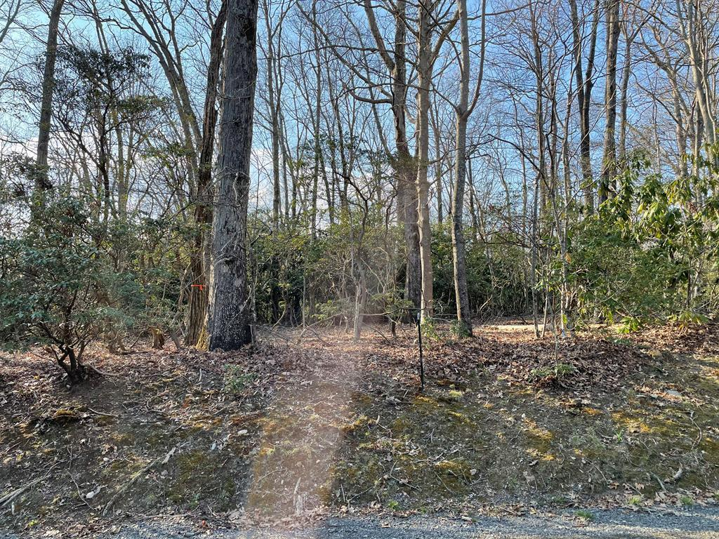Beautiful lot with Rhododendrons and Mature trees plus a view of the Piedmont!!  What more could you ask for ?  oh yes, it is also a LEVEL lot which is a perfect  for building your dream house just a short walk from the Blue Ridge Parkway.  The lot is located in Ground Hog Mountain Development , which is well development with their own Well and Septic system that is available for owners to hook into.  HOA are $81 per quarter, and Well and Septic can be added for a quarterly fee if using the HOA provided .