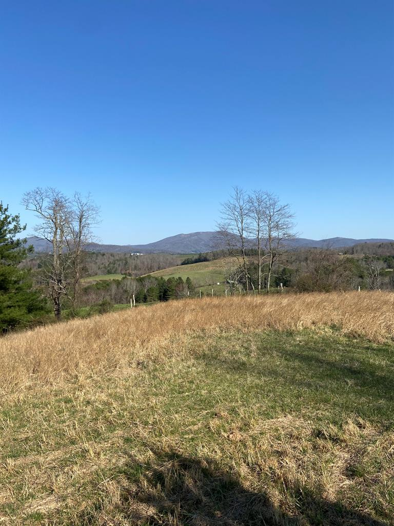 Nice 60 acres just minutes outside Independence! Would make a great site to build a house with views. Has septic, no water. Bring your horses and cows.