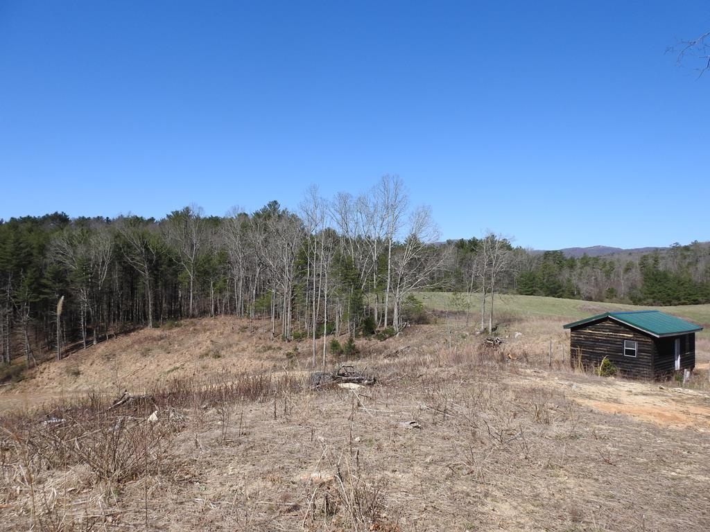 Small cabin with 4.4 acres and very secluded in Grayson County. This property is located between Galax & Independence and only minutes to the New River Boat Landing.  Great getaway place with an abundance of wildlife !