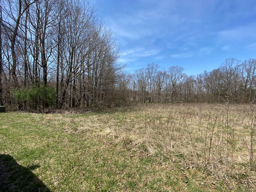 Nice 17.25+/-acre tract of land located in Elk Horn Acres. This land can be purchased in addition to MLS#  75738 & 77716. Nice build-able lot located right off of Rhododendron Rd with rolling/sloping woods in the back. Priced well below tax value for a quick sale. $75 annual fee includes Road Maintenance and an on site dumpster