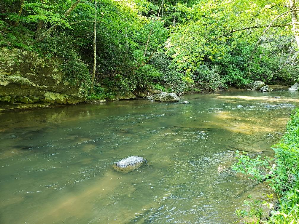 1.38 ACRES ON ELK CREEK, A BOLD STOCKED TROUT STREAM!  THIS IS THE PERFECT PLACE TO BUILD THAT WEEKEND GET-A-WAY HOME ON OR BRING YOUR CAMPER TO ENJOY WHAT NATURE HAS TO OFFER! COMPLETELY PRIVATE WITH FRONTAGE ON ELK CREEK! BRING YOUR LOUNGE CHAIR AND FISHING POLES AND WATCH THE GRAND KIDS CATCH SOME FISH!