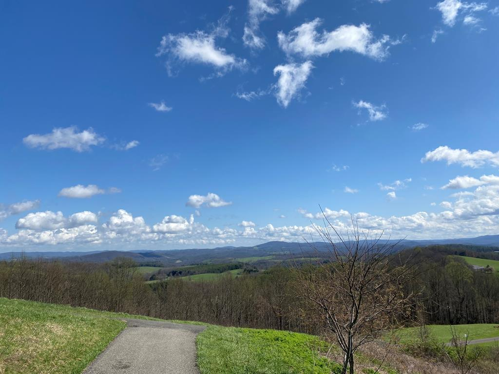 This gorgeous 2.15acre lot is located in Hillcrest Estates and features endless breathtaking mountain views, paved road access, rolling building site and public water system availability. This lot is located close to the new Highway 58 bypass and is a beautiful, peaceful and well maintained neighborhood. Call or Text listing agent to see the VIEWS!!!!!!!!!!