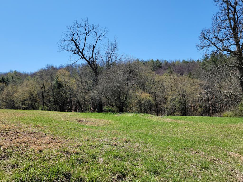 Gorgeous 6.7 acres with views located just off the Blue Ridge Parkway! This open and wooded tract offers beautiful building sites with electric, new well and septic, and driveway in place. Located in close proximity to Blue Ridge Music Center, Crooked Creek Virginia Game and Inland Fisheries and the New River.