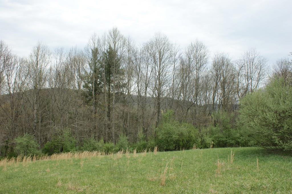 Beautiful building tract in an awesome mountain community.  The land lays level to gently slopping at road frontage.  Perfect for building your mountain cabin.  Some clearing of trees at the back of the property would give an opportunity for views of the amazing mountains of Grayson County, VA.  Close to the New River, the New River Trail and Jefferson National Forest.  Multiple recreational opportunities.  Give us a call today to take a look.