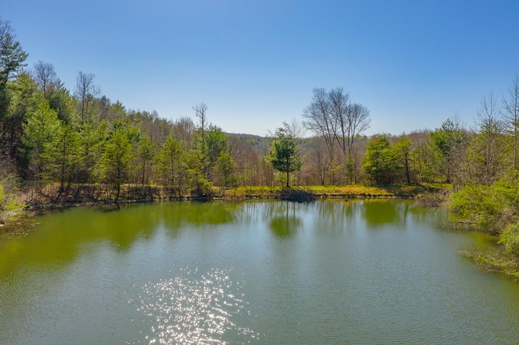 This is a very rare and highly sought after type of property here! You have just over 49 acres of privacy with a creek and a stocked pond on it. The back of the property adjoins to 686 acres owned by Commission of Game and Inland Fisheries. This is an outdoorsman paradise! You couldn't ask for a better suited property for your dream mountain home. There are hunting stands in place on the property. The pond is approximately 7/10th of an acre, and stocked with trout and blue gill. You are about an hour to Blacksburg, an hour to Winston Salem, and close to all of the local amenities. Locally there are horse trails, hiking trails, bold creeks for kayaking and trout fishing. You are also  less than 15 minutes from Walmart, Lowes, Hobby Lobby, and everything else that Galax has to offer.  Call today, before you miss this amazing property!