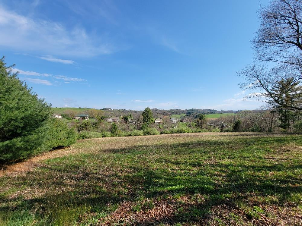 7.3 ACRES IN COMMONWEALTH PLACE WITH PRIVACY AND A GREAT PLACE TO BUILD YOUR NEW HOME &  CONVENIENCE TO GALAX AND I-77!  MIXTURE OF OPEN AND WOODED LAND WITH COUNTY WATER AVAILABLE.  TRACTS OF LAND LIKE THIS IS HARD TO COME BY IN THIS LOCATION.